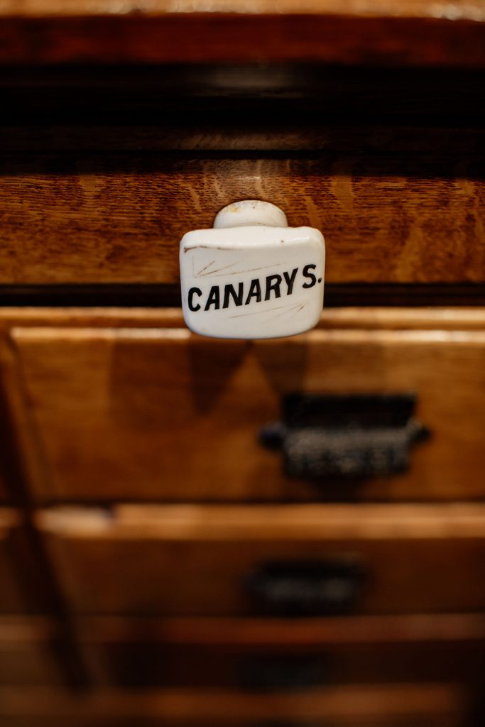 Canarys drawer pull